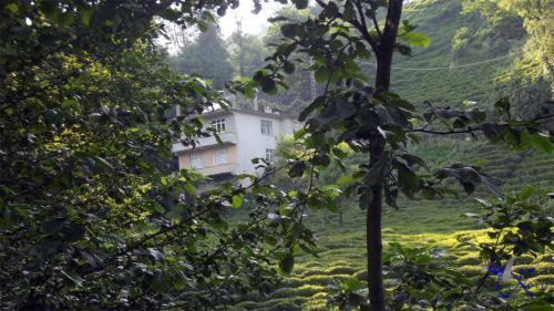 Aktaş Köyü  2013  Yaz